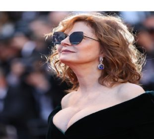 Susan Sarandon is looking for someone 'adventuresome'