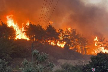 Turkey on fire